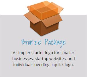 Bronze Logo Design Package